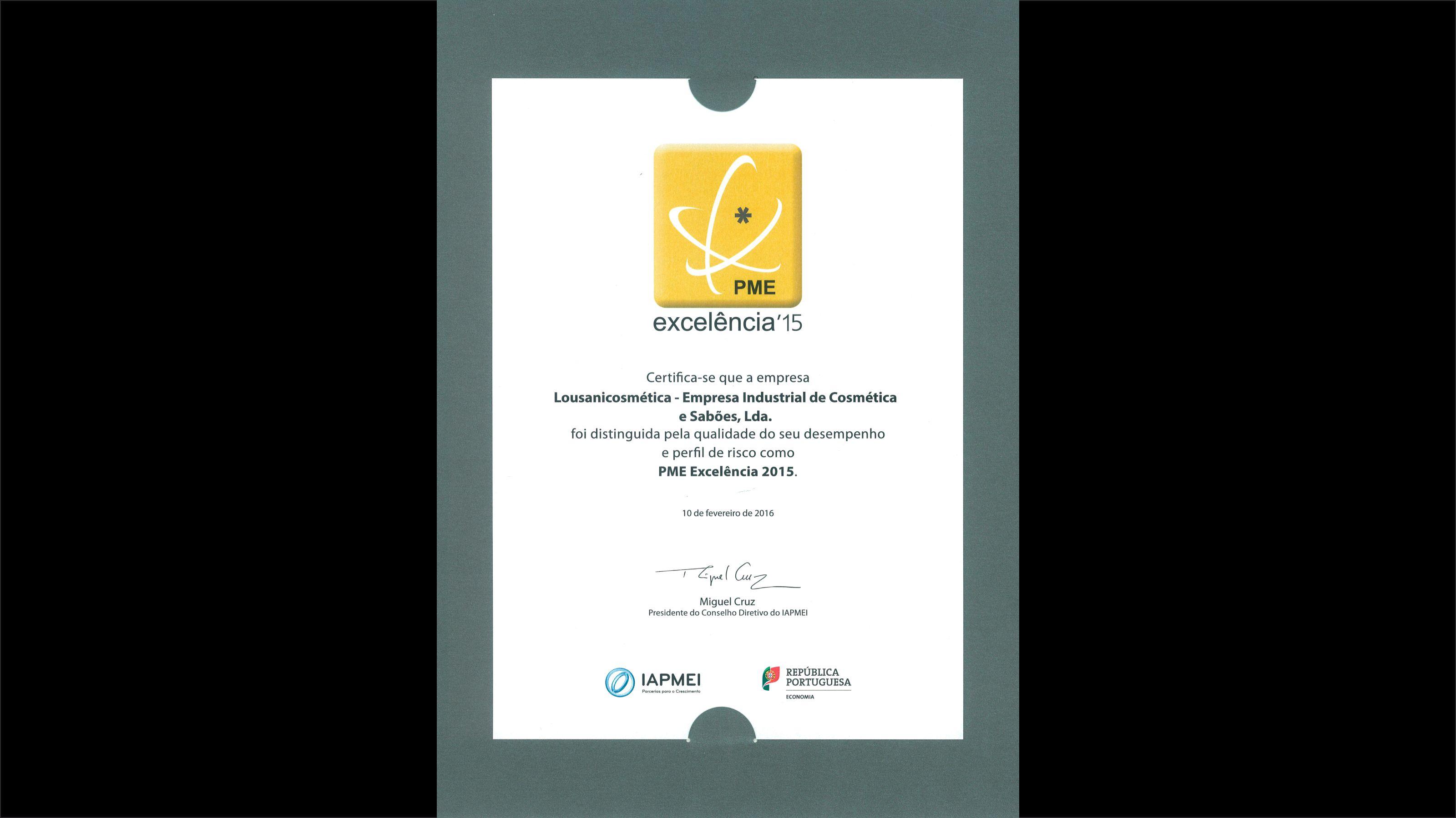 Galardão PME Excelência 2015